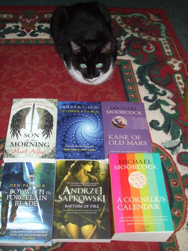 Six books, one cat.